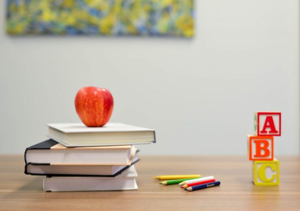 Praxisschule - Partnerschule